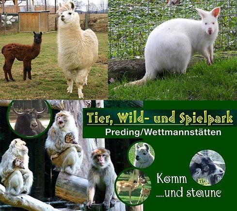 Tierpark-Preding.jpg