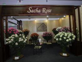 Sacha-Rose-1-300x200.jpg