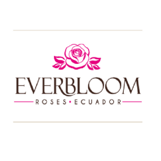 Everbloom Roses