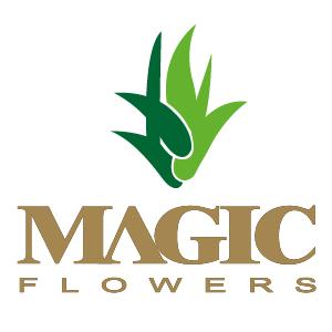MAGIC FLOWERS