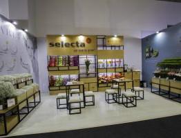 Selecta-Colombia-1-300x200.jpg