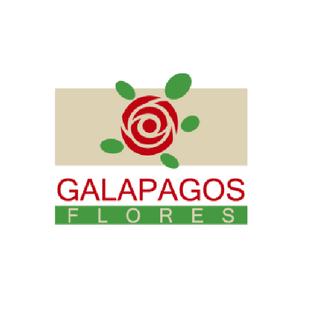 Galapagos Flores