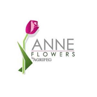 AGRIFEG S.A. ANNE FLOWERS