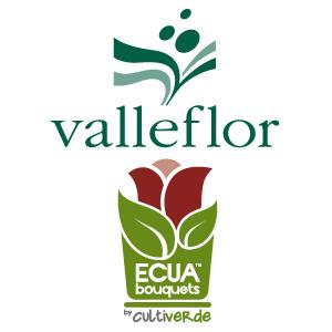 VALLEFLOR / ECUABOUQUETS