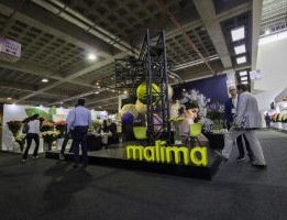 Malima-1-300x200.jpg