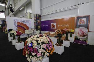 Quito-Inor-Flowers-1-300x200.jpg
