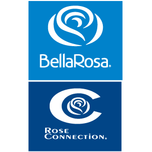 BELLAROSA ROSE CONNECTION_Mesa de trabaj