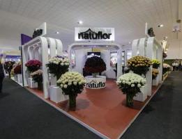 Natuflor-1-300x200.jpg