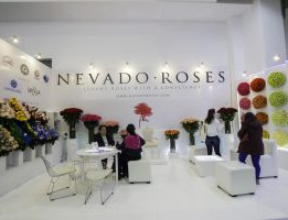Nevado-Roses-1-300x200.jpg