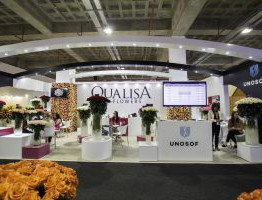 QualiSA-Flowers-1-300x200.jpg