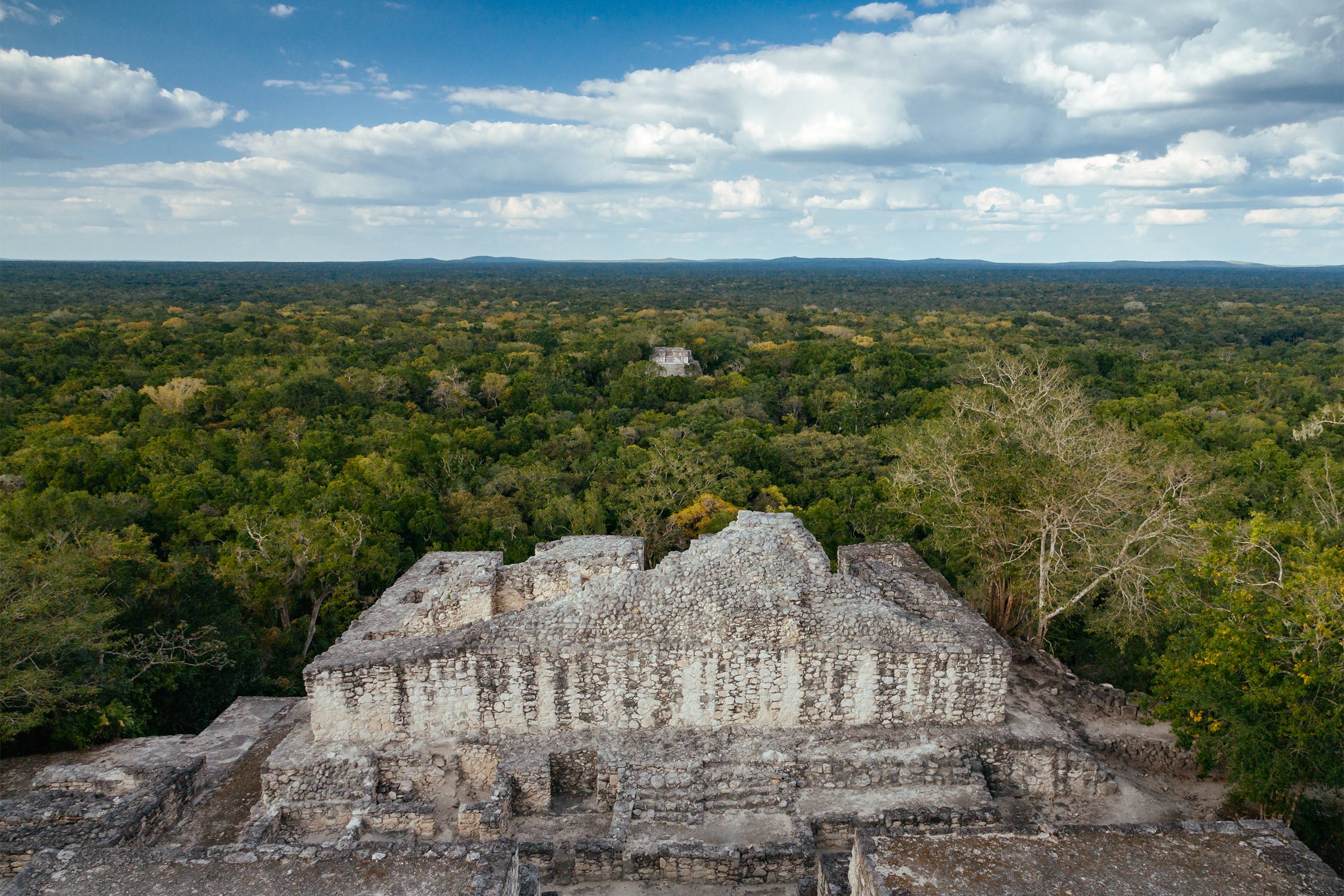 Calakmul Reserve in Mexico