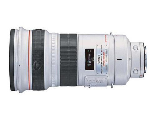 Canon EF 300mm f/2.8L IS USM Review