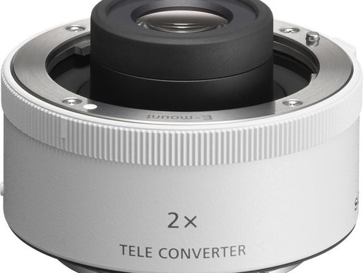 Sony FE 2x Teleconverter Review