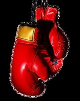 Boxing-Gloves-PNG-Transparent-Image-808x