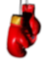 Boxing-Gloves-PNG-Transparent-Image-808x
