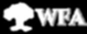 Forex Award | World Forex Award |  The Best Forex Broker