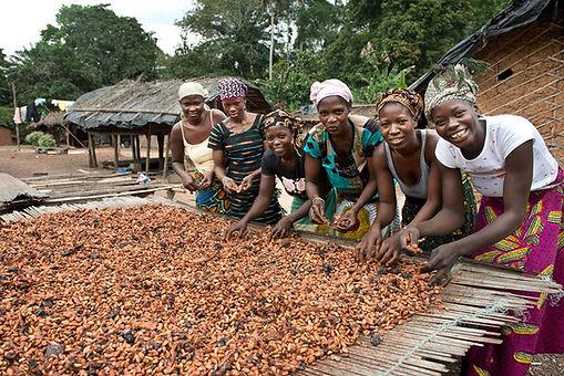 cacao farmers.jpg