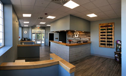 Completed Front lobby from cat only waiting area | PMAH in Acton Concord