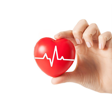 Cardiology Veterinarian Acton Concord Maynard Sudbury Stow MA