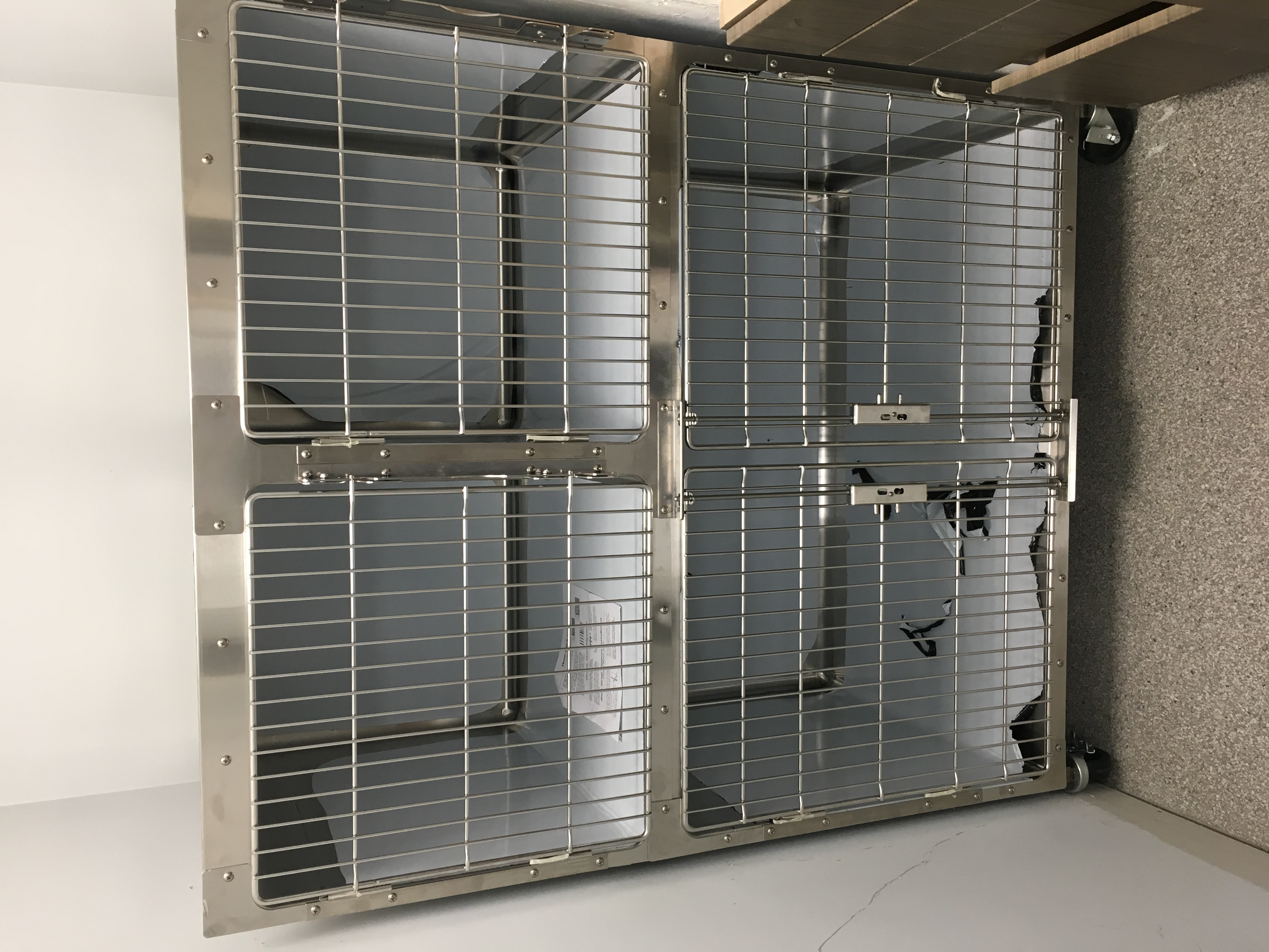ISO cages are in | PMAH Vet Hospital in South Acton MA