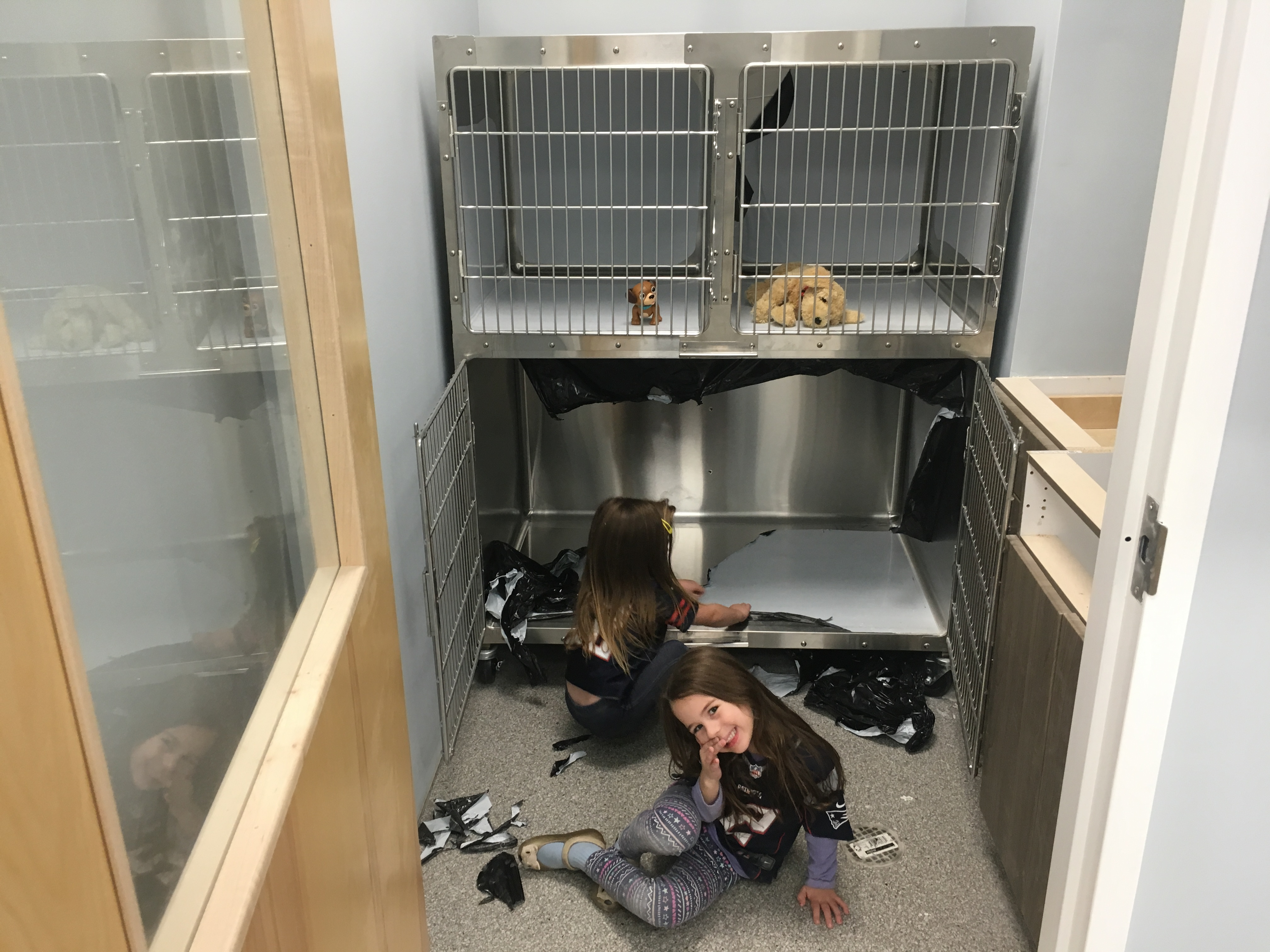 Getting the cages ready  | PMAH Vet Hospital in South Acton MA