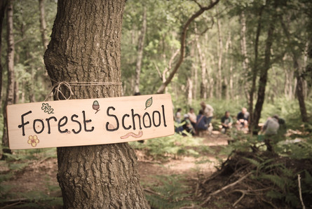 Lots of Forest school