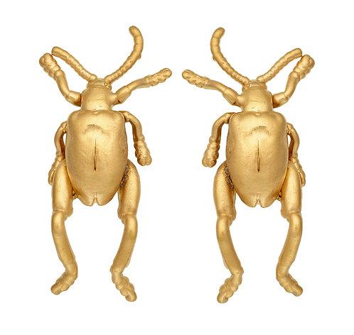 Frog Beetle Studs