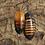 Thumbnail: Hissing Roach