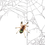 Thumbnail: Blue Fang Skeleton