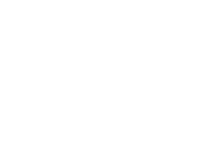 STIR to ACTION logo website WHITE.png