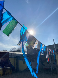 drying shopping bags on the clothesline