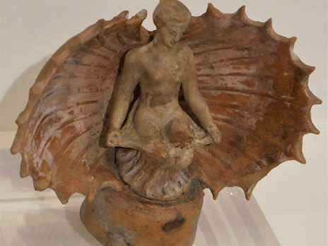 Aphrodite and Venus. Sex and the Shell
