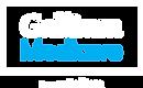 Gallium Branding_logo_white.png