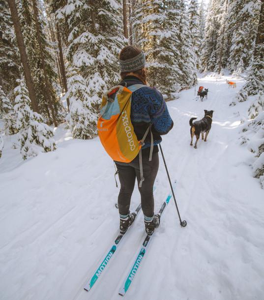 XC Ski - Echo Lake Trails.jpg