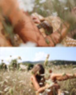 Wildflower Field Collage.jpeg