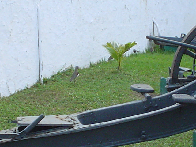 Forte De Copacabana 2004 010