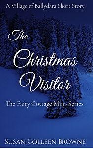 Christmas Visitor 2020.jpg