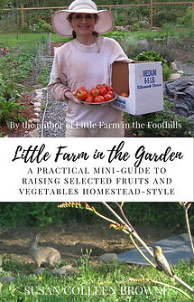Little Farm in the Garden2.jpg