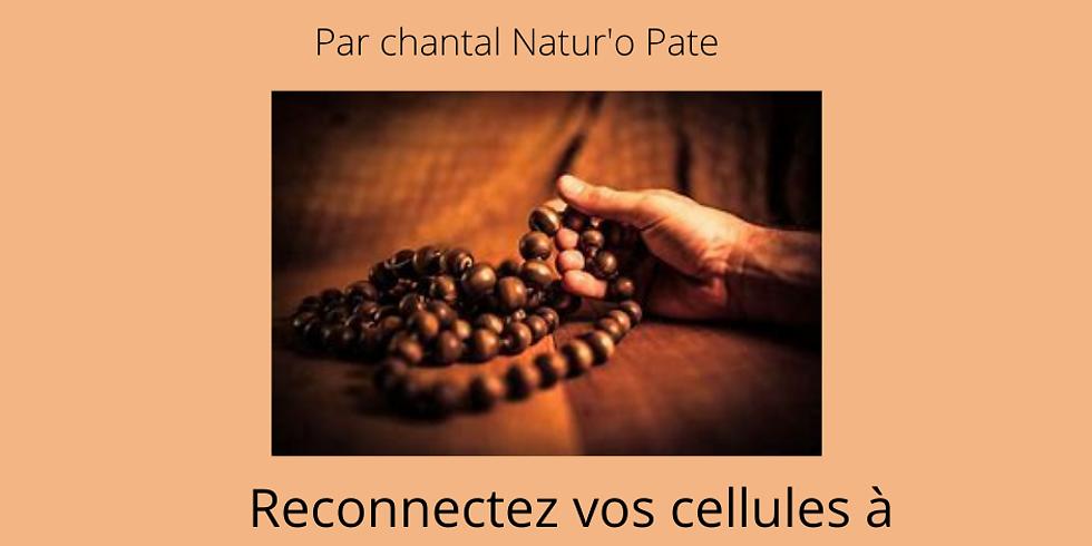 """Atelier Mantra """"reconnexion de toutes nos cellules aux énergies"""