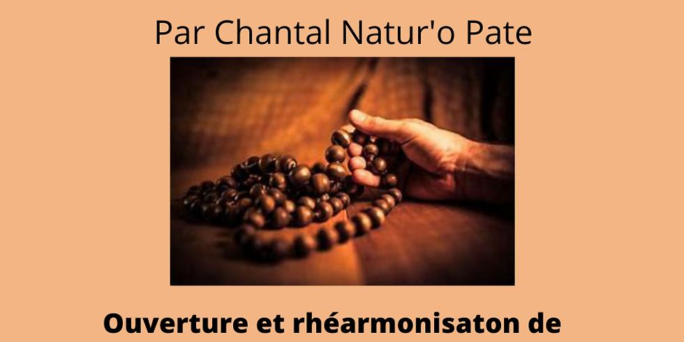 """Atelier """"mantra- ouverture et réharmonisation de chakras"""""""