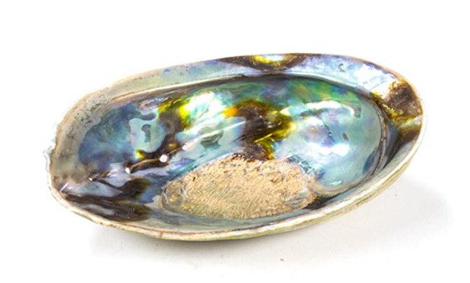 Abalone Arcen Ciel