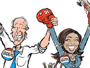 Del senado a la vicepresidencia: Cómo Kamala Harris se afianza en la escena política estadounidense