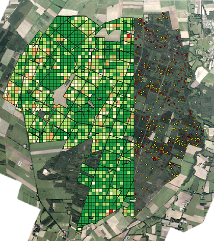 Meppen_dots and grid map.png