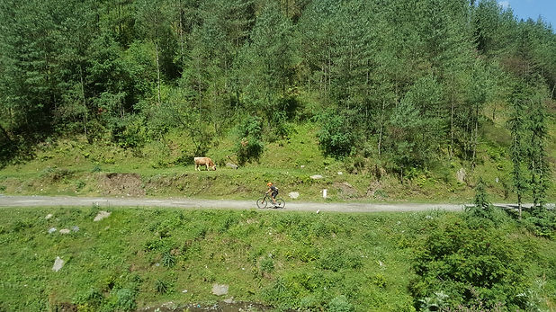 Mountain biking trails in India - Himala
