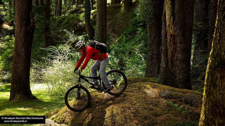 mountain bike camp - 2.jpg