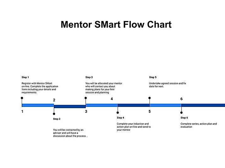 MS flow chart.jpg