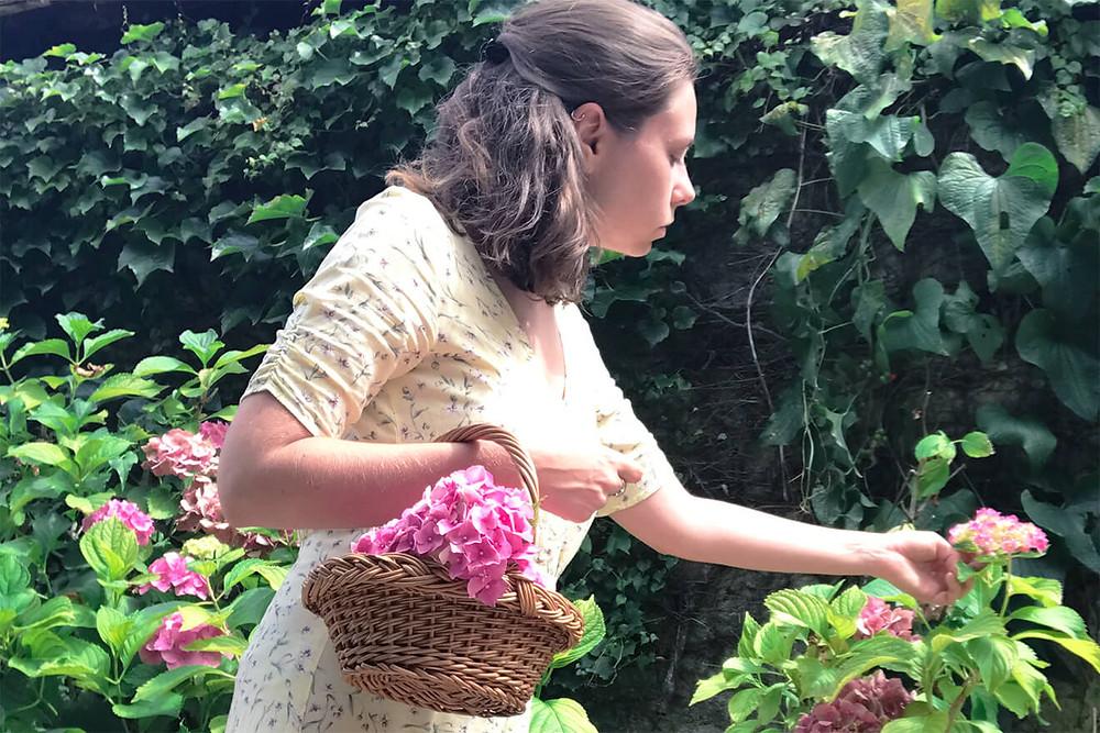 faire un herbier - la cueillette des fleurs