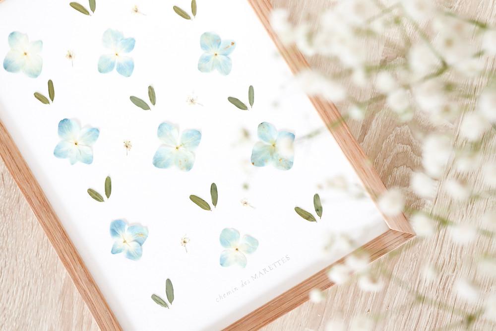 design floral, herbier décoratif