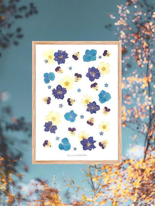 herbier bleu collection divine