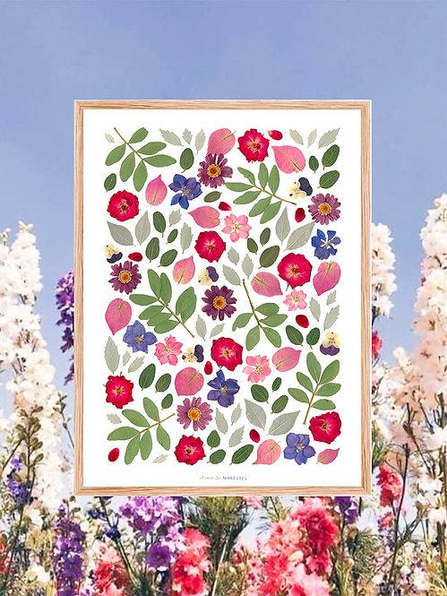 cadre herbier bleu violet chemin des marettes